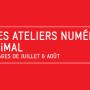 Les Ateliers Numériques d'Été 2015